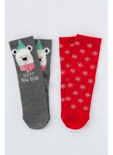 Penti Unisex Bear 2Li Soket Çorap Renkli